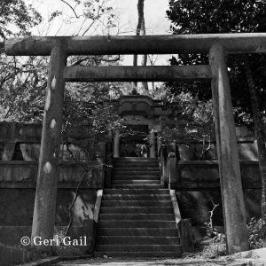 Temple in Nago, now the tori has been taken down, down the street from the large tree in the middle of Nago not too far from the town museum