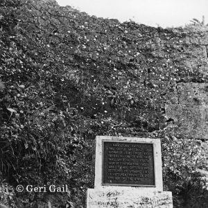 Placard from Nakagusuku Castle, stolen by an American serviceman, now it is covered by shrubbery and cannot be reached because of habu